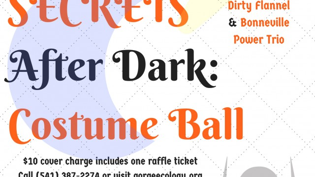 SECRETS Costume Ball flier